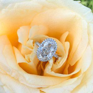 oval diamond shapes - maytal hannah